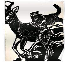 Tiger Eats Deer Poster