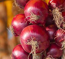 onion by spetenfia