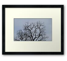 HDR Composite - Tree Silhouette Framed Print