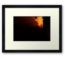HDR Composite - Trees at Night with Strange Green Light Framed Print