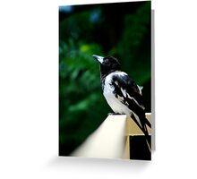 Wistful Bird Greeting Card