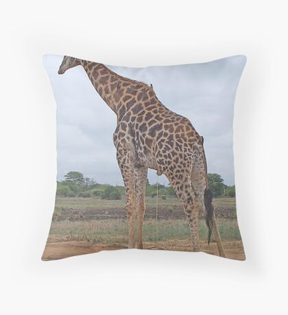 There's Allways Something To Spoil A Photo! Throw Pillow
