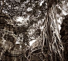Ta Prohm by Chris Muscat