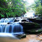 Leura Cascades by Andrew McNeil