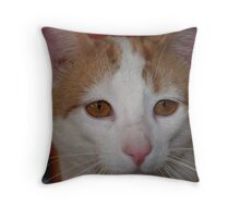 Ginger Stare Throw Pillow