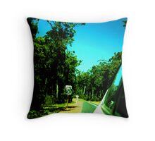 roadtrip retrospective Throw Pillow