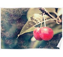 A pair of cherries Poster