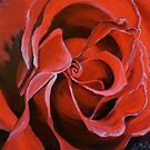 Red Rose.1 by jomash