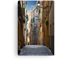 French Solitude Canvas Print