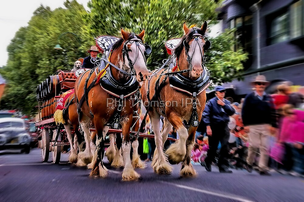 """""""The Clydesdales"""" by Phil Thomson IPA"""