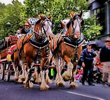 """The Clydesdales"" by Phil Thomson IPA"