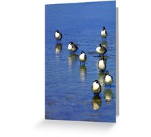 All together now! Greeting Card