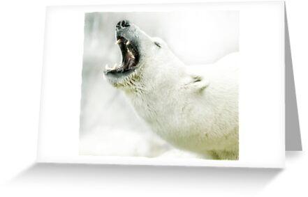 Roar for help by Alan Mattison