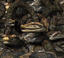 Pit Full of Snakes by Lisa  Weber