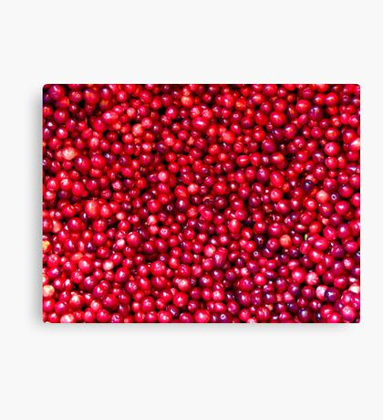 Cranberry Harvest - Fall Autumn Season - Plentiful Red Berries Canvas Print