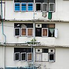 Windows of little opportunity by macmichael