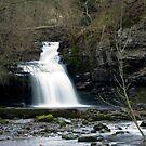 West Burton Falls by dozzie