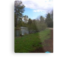 Creek in Eugene, OR Metal Print