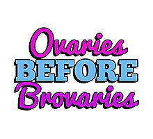 Ovaries before brovaries Photographic Print