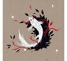 KOI RIBBONS Photographic Print