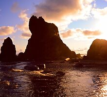 Olympic National Park by Chaney Swiney