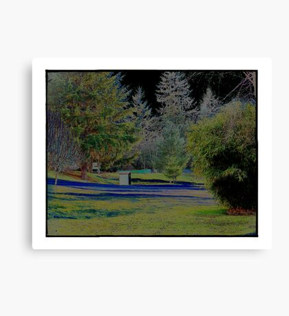 The Difference Canvas Print