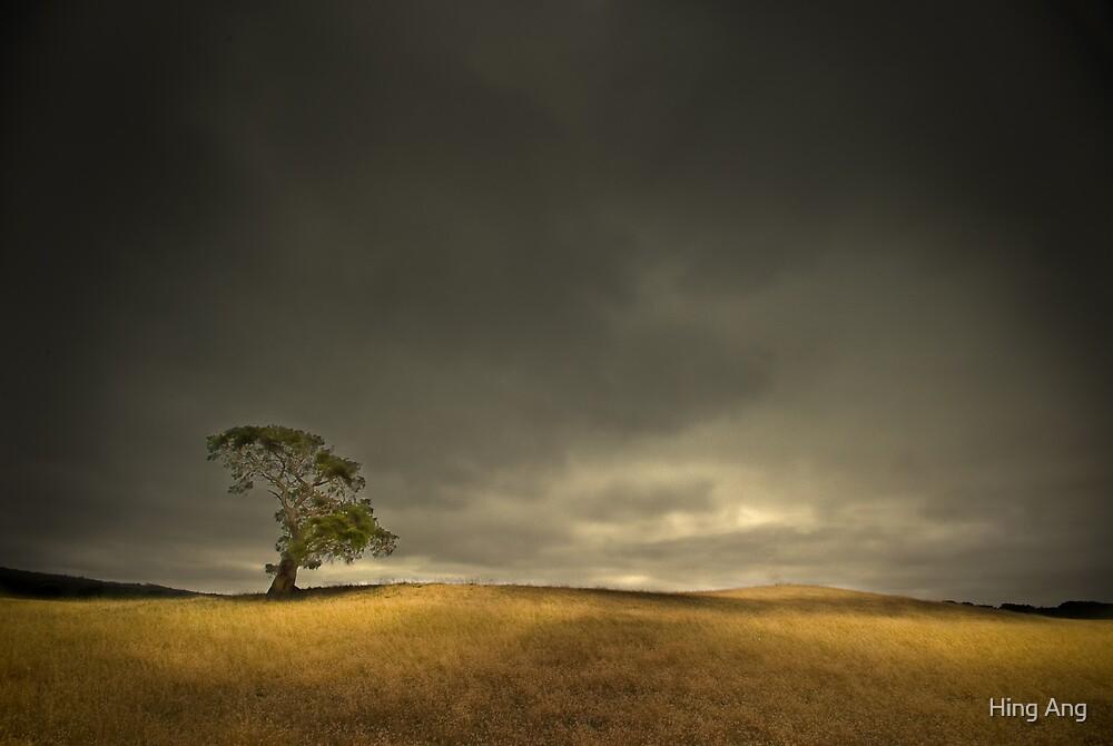 Dark Epiphany by Hing Ang Photography www.hanganimage.com