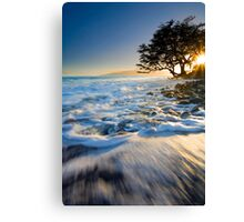 Swept out to Sea Canvas Print