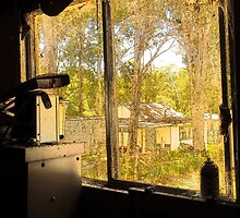 Through the window . . . by Rosalie Dale