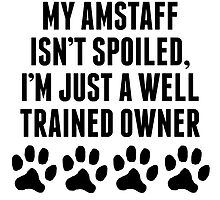Well Trained AmStaff Owner by kwg2200