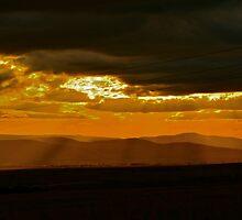 Zululand Landscape Sunset with Electricity Lines by Deborah V Townsend