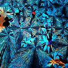 ethyl urea crystals by photosynthesis