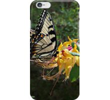 Eastern Tiger Swallowtail (Papilio glaucus) iPhone Case/Skin