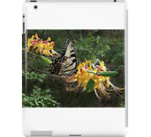 Eastern Tiger Swallowtail (Papilio glaucus) iPad Case/Skin