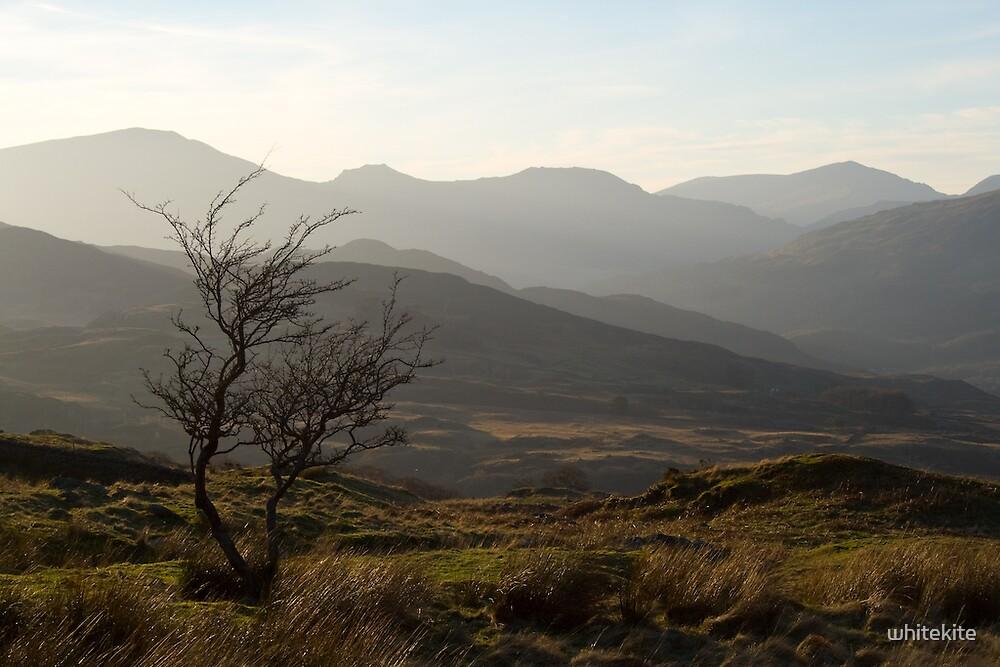 View to Snowdon by whitekite