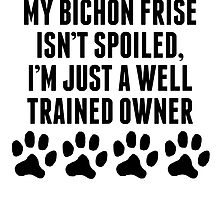 Well Trained Bichon Frise Owner by kwg2200