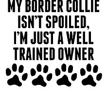 Well Trained Border Collie Owner by kwg2200