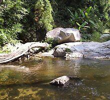 Stream with rocks by LeeLeon