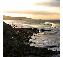 Seals at Sunrise Photographic Print