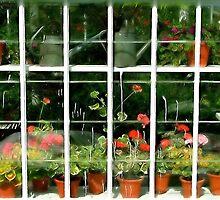 Artists Garden 2 by Kenart
