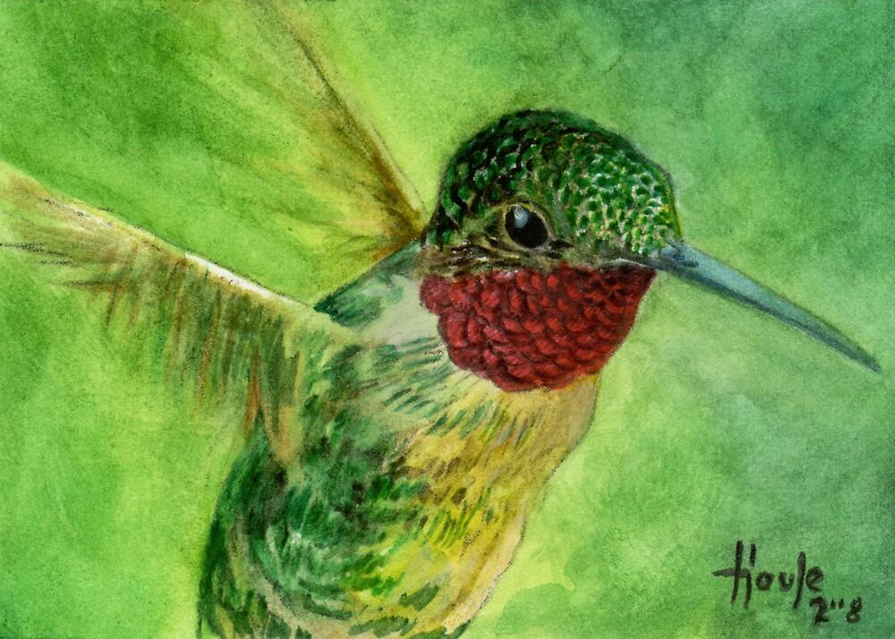 Emeralds and Rubies - Ruby Throated Hummingbird by John Houle