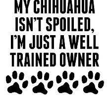 Well Trained Chihuahua Owner by kwg2200