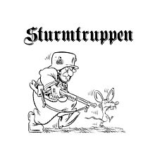 Sturmtruppen Photographic Print