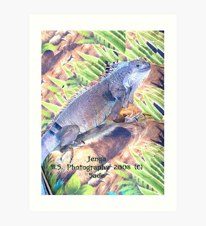 Janga The Great Green Iguana Art Print