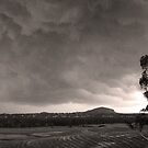 Stormfront by KellieBee