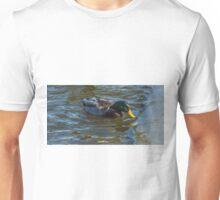 Drake Mallard and ice shelf Unisex T-Shirt