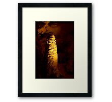 Formation at Tantanoola Cave Framed Print
