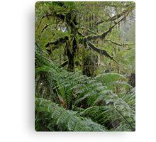 Creepy Forest. Metal Print