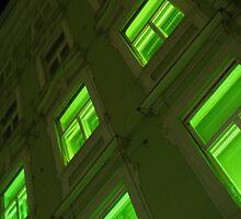 GREEN HOUSE WINDOWS  by SofiaYoushi