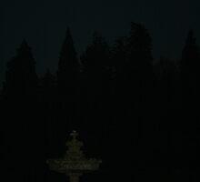 Fountain at Night by joconti